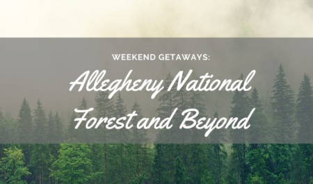 Weekend Getaways: Allegheny National Forest and beyond