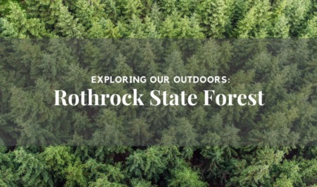 Exploring Our Outdoors: Rothrock State Forest