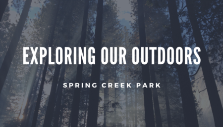 Exploring Our Outdoors: Spring Creek Park