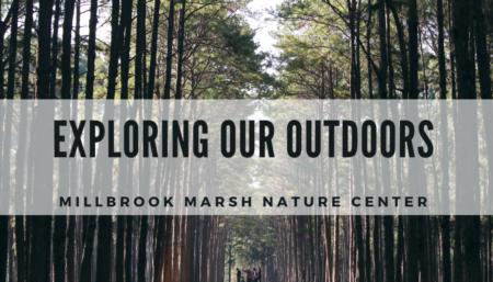 Exploring our Outdoors | Millbrook Marsh Nature Center