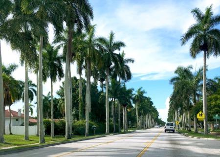 History of McGregor Boulevard