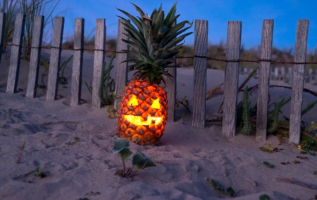 Tropical Pumpkin Carving