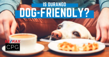Durango: Colorado's Dog-Friendliest Town