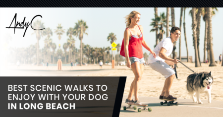 Best Scenic Walks To Enjoy With Your Dog in Long Beach