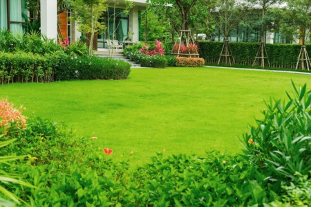4 Front Yard Curb Appeal Tips for an Impressive Lawn