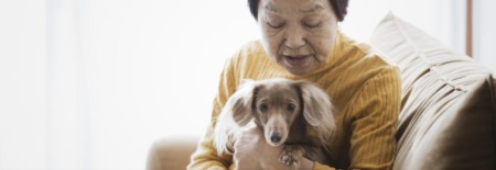 New Emotional Support Animal Law: What's It All Mean?