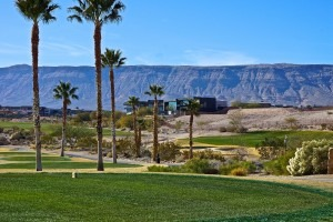 Past Ridges of Summerlin Neighborhood Sold Properties