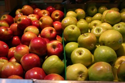 Fresh Produce and More at the Riviera Village Farmer's Market