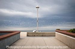 Local Spotlight: Bergen Photography