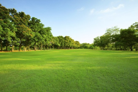 What You Need To Know About Buying and Selling Land