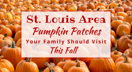 St. Louis Area Pumpkin Patches Your Family Should Visit This Fall