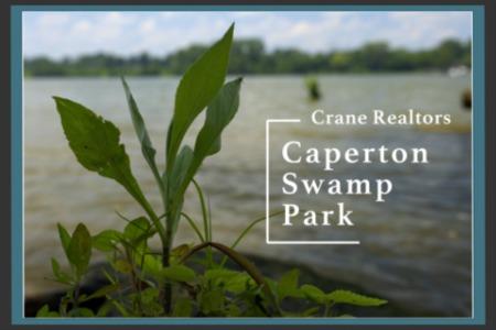 Caperton Swamp Park | Indian Hills, Louisville, KY
