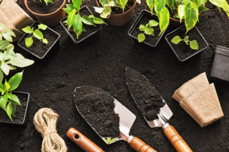 Home Improvement: Landscaping to Sell