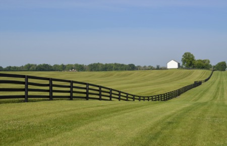 What to Know When Purchasing Rural Property