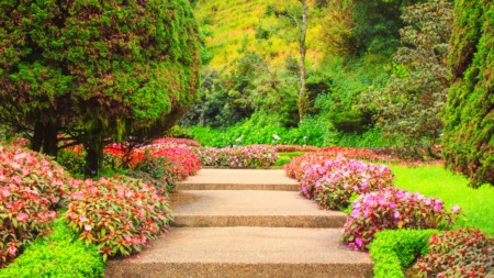 Using Shrubs and Flowers to Boost Curb Appeal When Selling Your Home