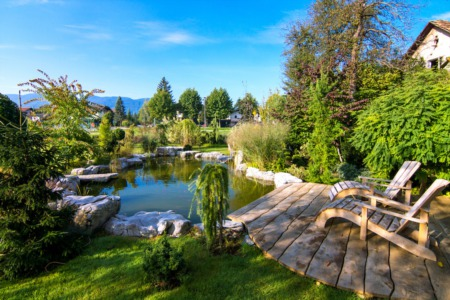 The Ultimate Home Landscaping Guide for Beginners