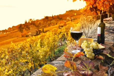 The 4 Best Vineyards & Wineries in Spokane, WA