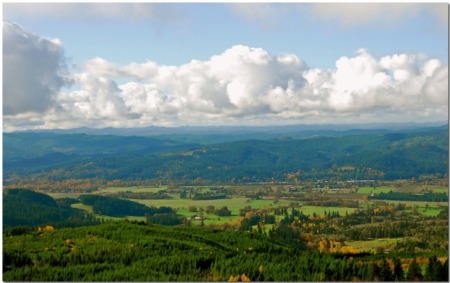 Willamette Valley Home Buyers Guide