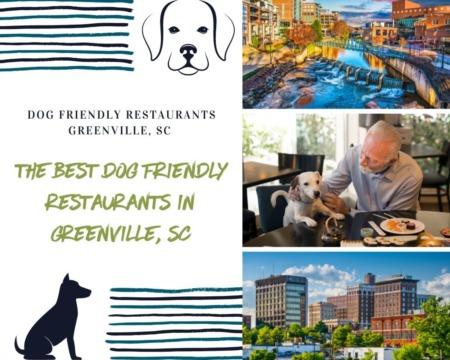 The Best Dog Friendly Restaurants in Greenville, SC