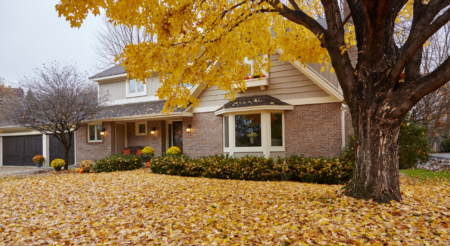 Homeowners – Prepare Your Lawn for Next Year