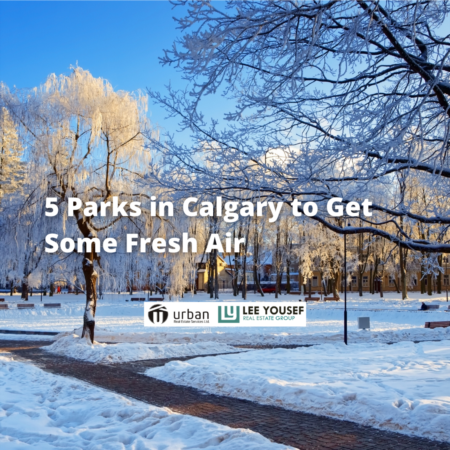 5 Parks in Calgary to Get Some Fresh Air