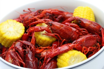 Feast at the Crawfish Boil at the Garage Bar May 29