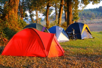Spend a Night Under the Stars at Camp Taylor Memorial Park July 26