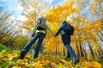 Hike Under the Full Moon in Bernheim Forest October 16