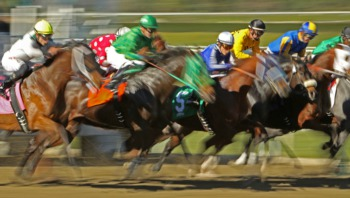 Enjoy a Day of Champions at the the Kentucky Derby Museum November 2