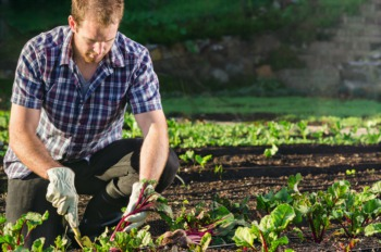 Learn Urban Farming for Beginners at Riverside January 26