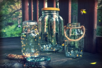 Visit Expedition Fireflies at Bernheim Forest June 23