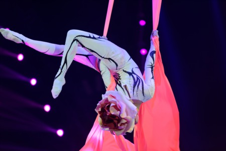 See Something Amazing at Corteo by Cirque du Soleil August 15