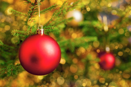 Celebrate Christmas at Christian Academy of Louisville November 3