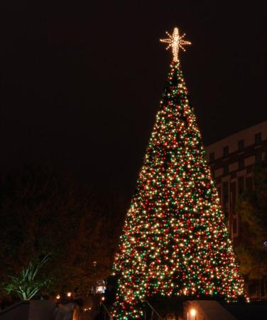 See Light Up Louisville at Louisville Metro Hall November 23