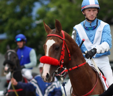 Get a Sneak Peek at the Derby at Wellspring April 23