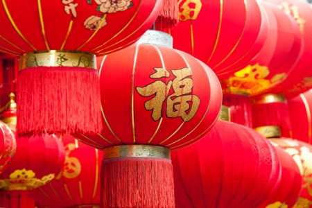 See the Wild Life Asian Lantern Festival March 12