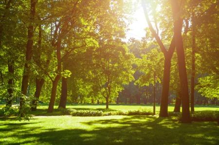 Discover Historic Audubon Park This May