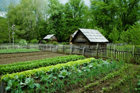 Tend to a Community Garden This May