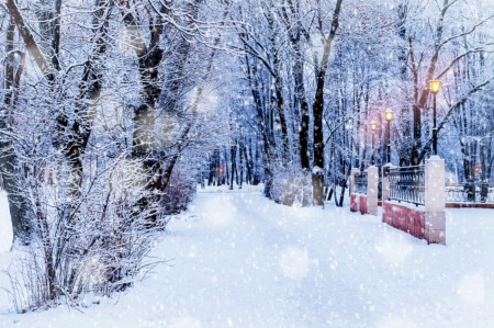 Sip Hot Chocolate and Go Walking This December
