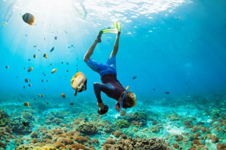 Try Scuba Diving This January 23