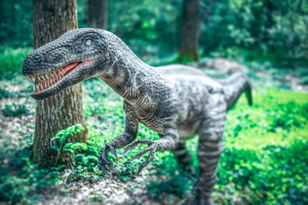 Go on a Dino Quest This July