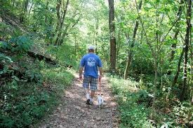 The Annual Guided Hike in Waverly Park on August 25th
