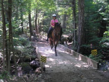 Want to Be One With Nature? Louisville Horseback Riding Trails That Won't Disappoint