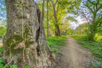 Scenes Around Beckley Creek Park, Part of the Parklands of Floyds Fork