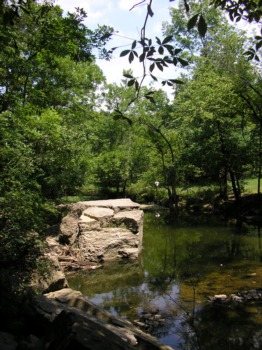 Cherokee Park Offers Louisville a Park for All