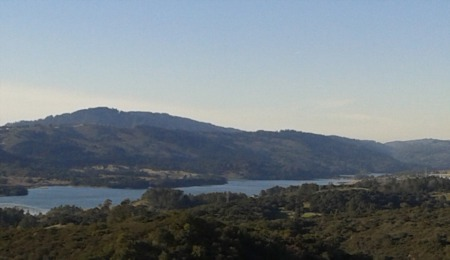 A Guide to San Francisco Peninsula City Living