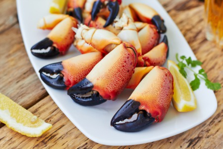 Best Seafood Restaurants for Florida Stone Crab