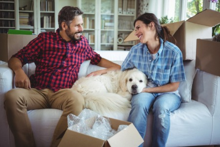 Moving Pets To The Suburbs Made Easy