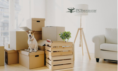 Be prepared for the cost of moving with pets