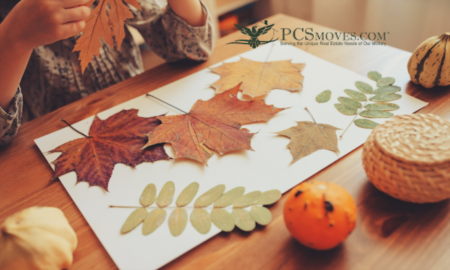 Affordable Autumn Decor Ideas